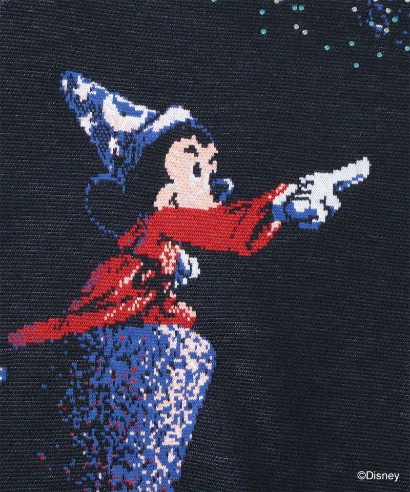 Disney FANTASIA Wind Stopper Knit Outer